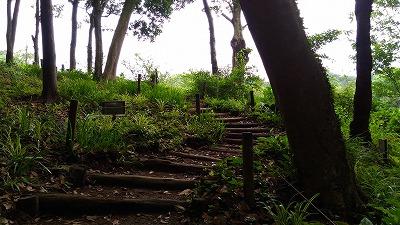 花野辺の里 階段
