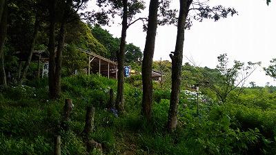 花野辺の里 茶屋