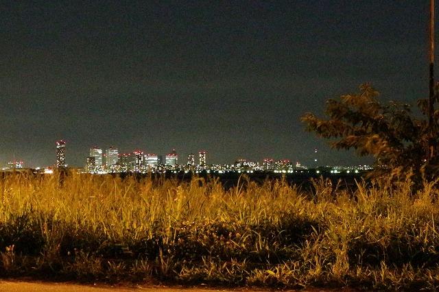 養老川臨海公園の夜景(幕張方面トリミング済み)