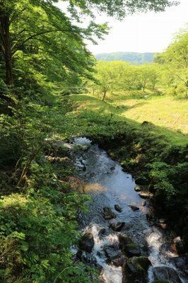 玉簾の滝までの景色