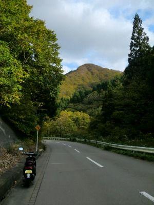 国道344号 黄色く色づいた山