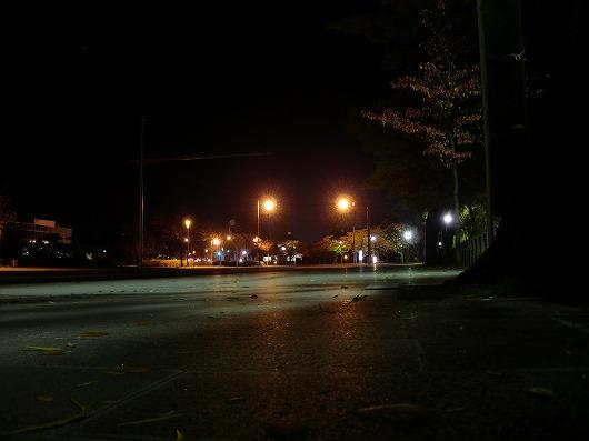 鶴岡公園 羽黒街道