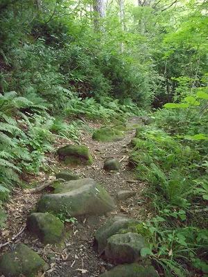二ノ滝へ 山歩き