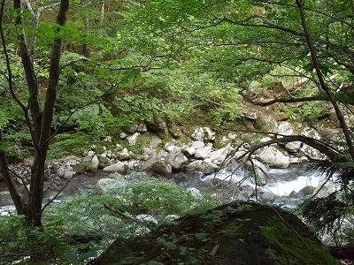二ノ滝へ 水が流れているのが見える