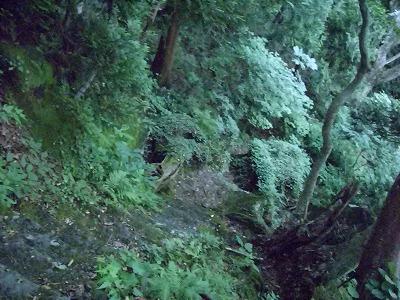 二ノ滝展望台から帰る 結構急な石段 苔生えてる