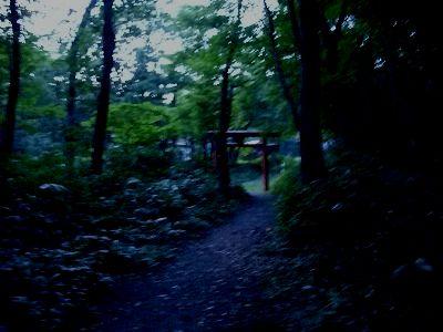 二の滝遊歩道入口へ帰着
